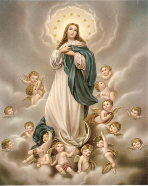 Imaculada-Conceição